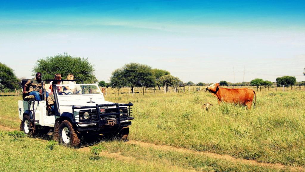 Tour über die Farm